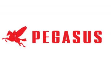 PEG-350427-91