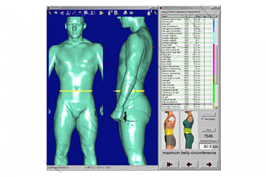 anthroscan - research, development & survey on human body - contec, Muscles